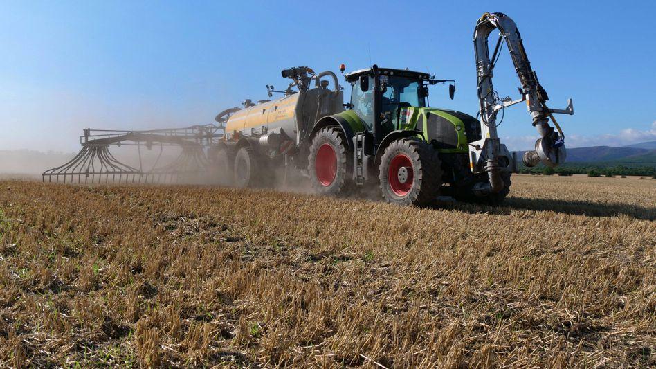 In einigen Regionen wird noch immer zu viel Gülle und andere Dünger auf die Felder gebracht