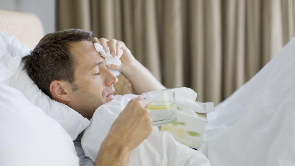 Kopfschmerzen, laufende Nase: Was hilft bei einer Erkältung?