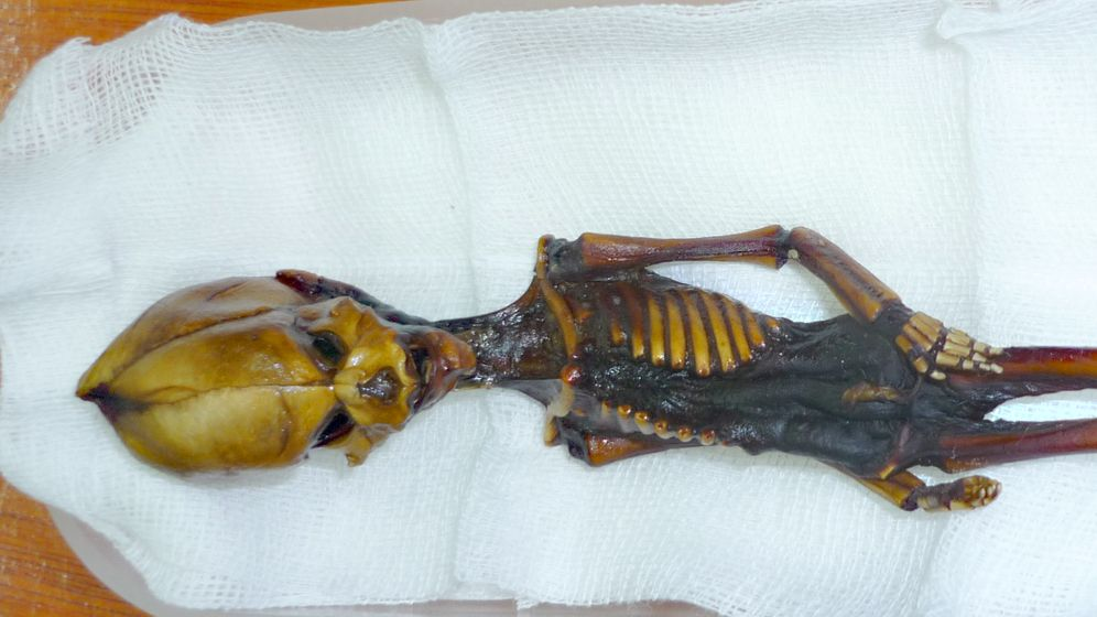 Alien-Rätsel: Ata, die Mini-Mumie aus der Wüste