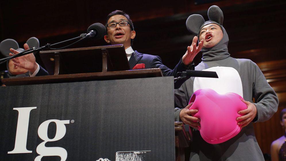Ig-Nobelpreise 2013: Mäuse, Kühe, Mistkäfer