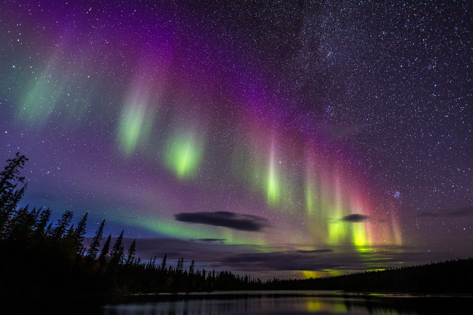 Nature TTL Photographer of the Year 2021 / Night Sky