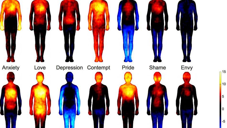 Gefühle im Körper: Die Silhouetten zeigen, wo die Versuchsteilnehmer über eine gesteigerte Körperaktivität berichteten (rot) und wo diese sich in ihrer Wahrnehmung eher abschwächte (blau). Die obere Reihe stellt die Resultate der Basisemotionen Wut, Furcht, Ekel, Freude, Traurigkeit und Überraschung gegenüber. In der unteren Reihe sind die Muster komplexerer Gefühle dargestellt - Angst, Liebe, Schwermut, Verachtung, Stolz, Scham und Neid