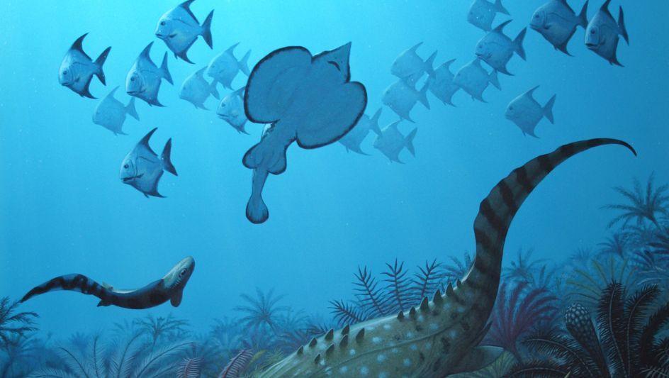 Kleine Unterwassertierwelt: Nach einem Massensterben im Devon setzten sich kleine Tiere durch