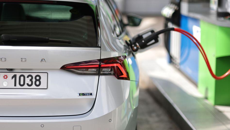 Erdgas als Alternative: Skodas Octavia G-Tec wird mit Erdgas und Benzin betrieben