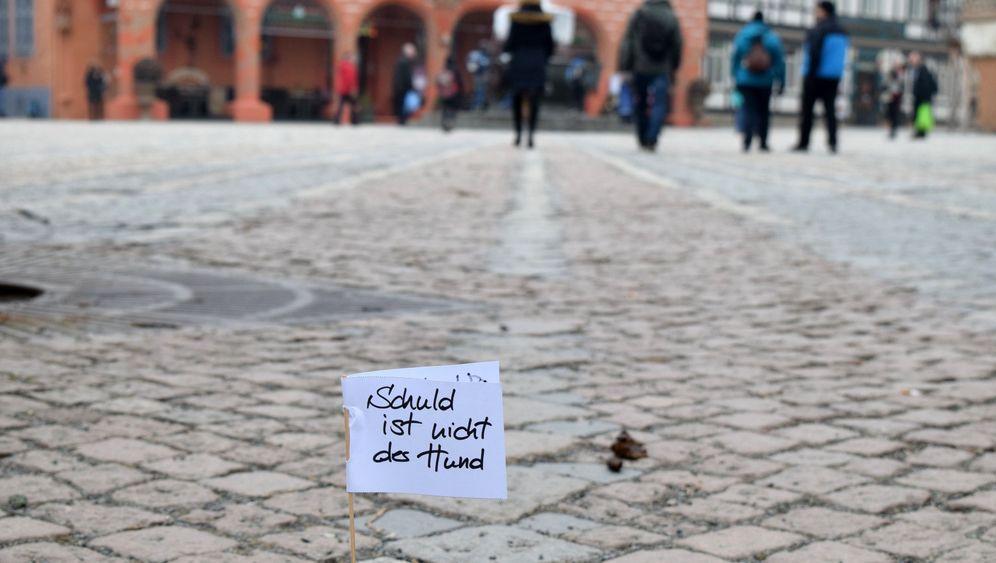 Goslar: Mit Fähnchen gegen Hundehaufen