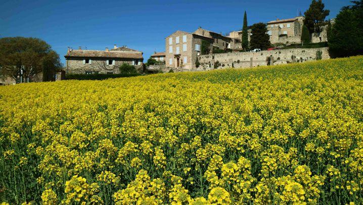 Frankreich: Die Pracht der Provence