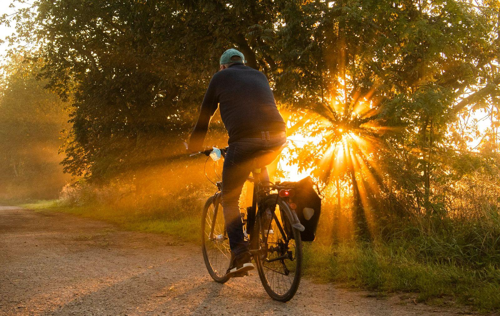 Goldener Septembermorgen in der Leinemasch