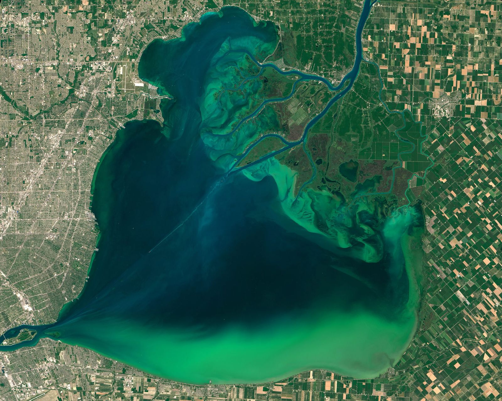 EINMALIGE VERWENDUNG Algenbefall / Lake St. Clair