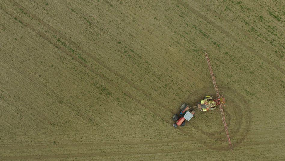 Ein Landwirt sprüht Pflanzenschutzmittel (Archivbild)