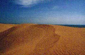 Wahiba Wüste: Besonders im Süden ist die Orientierung schwierig