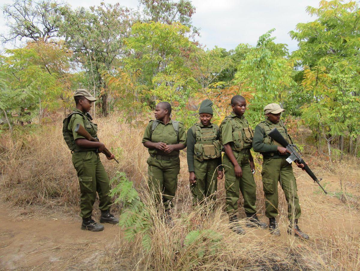 Strichmädchen Harare