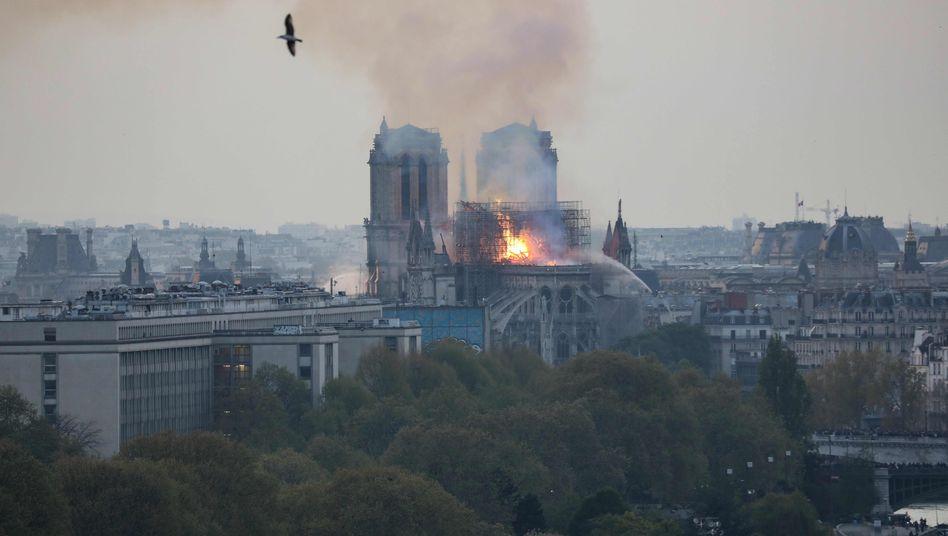 Brennende Kathedrale Notre Dame