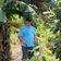 Was ein deutscher Auswanderer in Nicaragua lernte