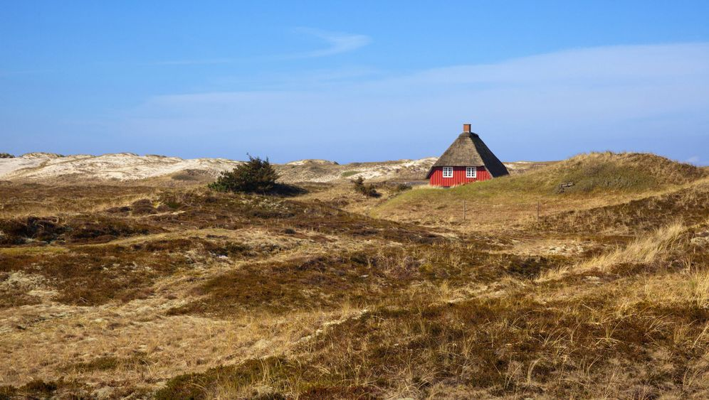 Dänemark: Holzhütte ohne Aussicht
