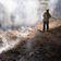 Tausende Hektar Wald durch Brände in Oregon zerstört