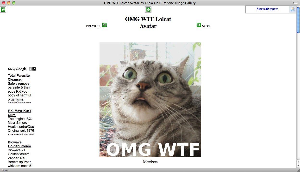 Screenshot Katze / OMG