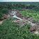 Die Milliardengeschäfte mit Brasiliens Ressourcen