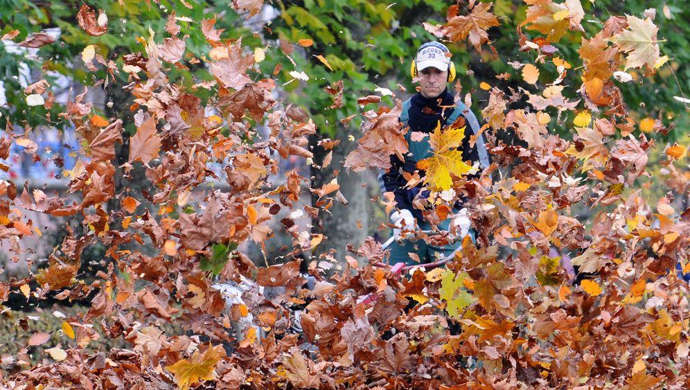 Herbst in Deutschland: Laubsaison