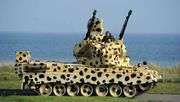 Bundesregierung genehmigt Export von 15 Gepard-Panzern nach Katar