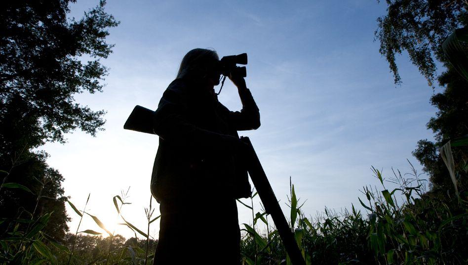 Auf der Jagd (Symbolbild)