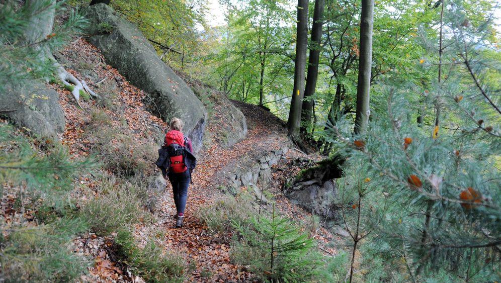 Grenzüberschreitend: Trekkingroute im Elbsandsteingebirge