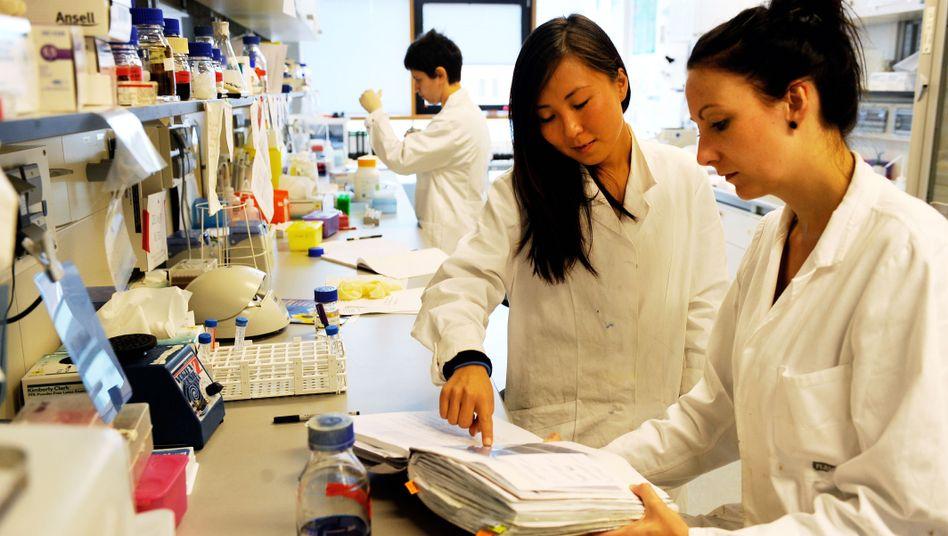 Frauen in der Wissenschaft: Wer wird eher Labor-Chef?