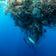 Was gegen die Vermüllung der Meere hilft? Vielleicht eine Börse