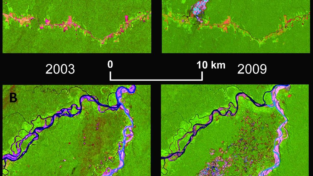 Goldschürfer in Peru: Aus Regenwald wird Kraterlandschaft