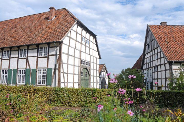 Geht gut los: Besuch des Freilichtmuseums in Detmold