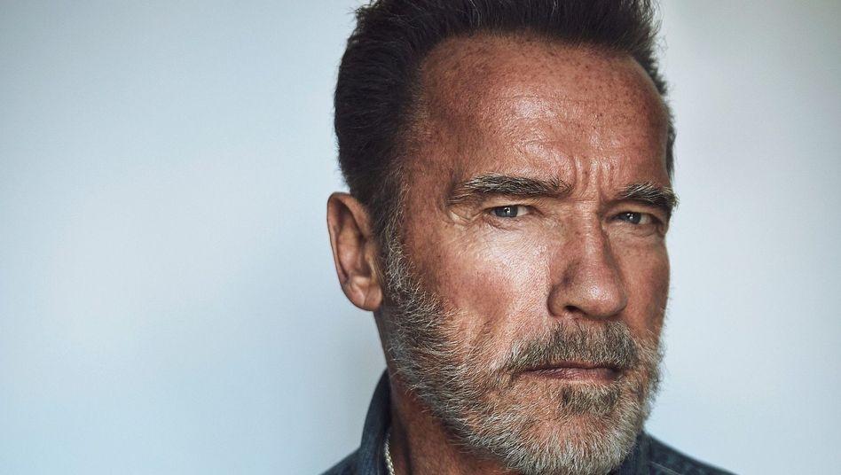 Schauspieler Schwarzenegger
