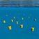 Roboter-Schwärme vermessen Ozeanströmungen