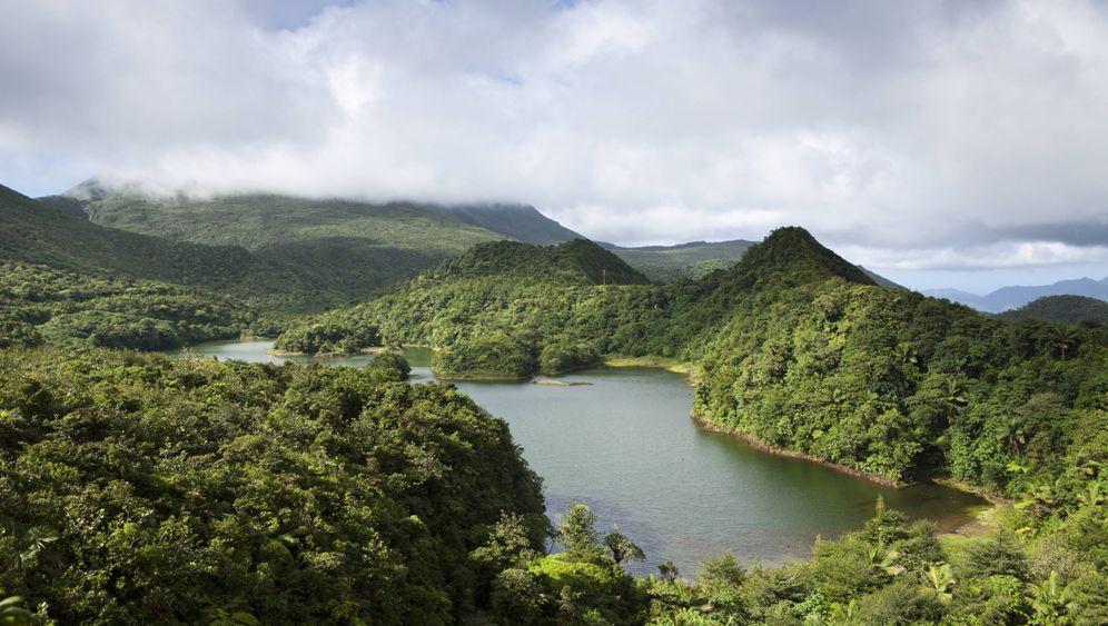 Dominica: Naturschönheit in der Karibik