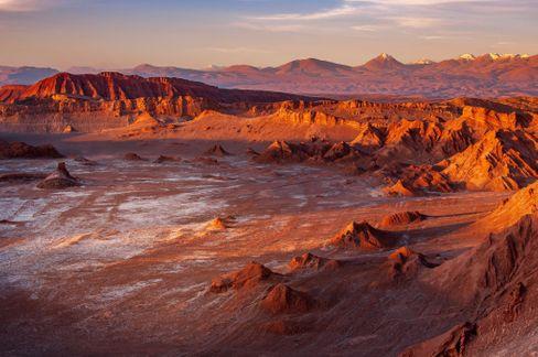 Atacama-Wüste: Wer hier überleben will, muss mit wenig Wasser auskommen