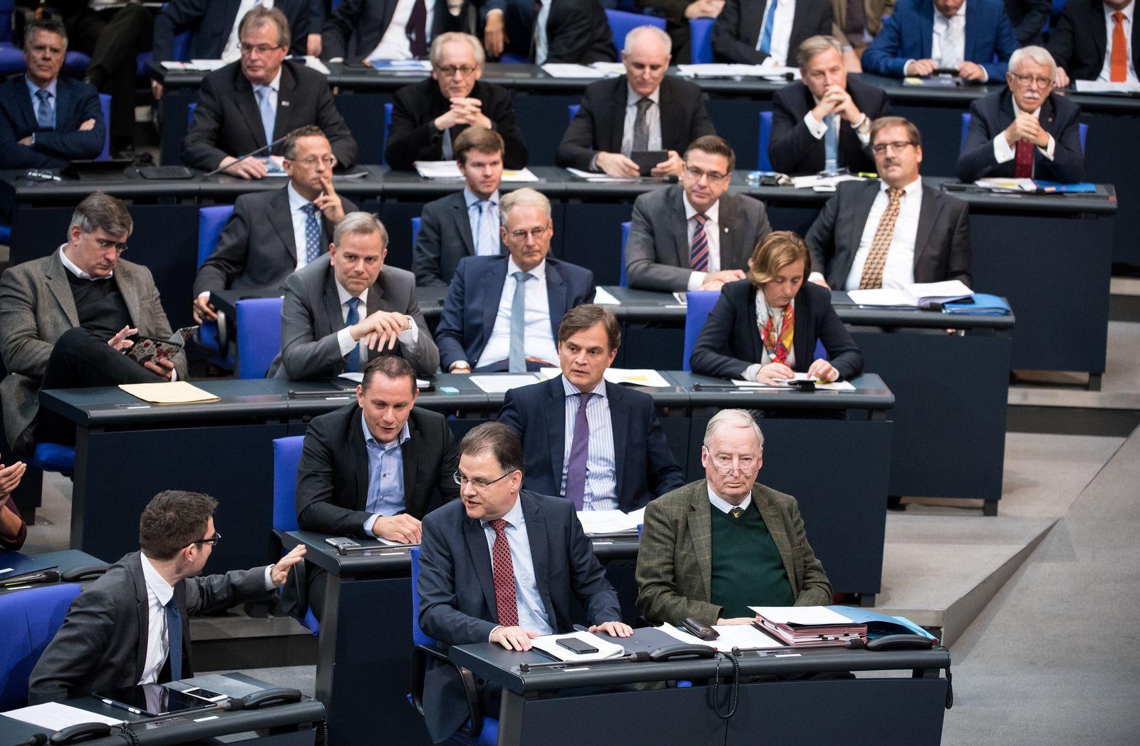 Bundestag AfD-Fraktion