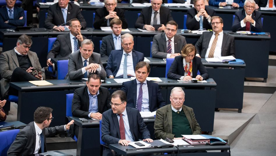 "AfD-Fraktion im Bundestag: ""Gesucht: Fels in der Brandung"""