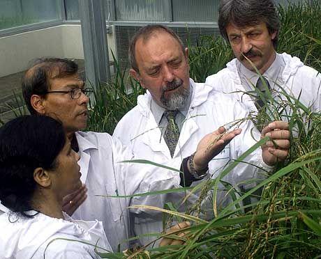 Pflanzenforscher Ingo Potrykus und Peter Beyer: Erfüllungsgehilfen der Agro-Industrie