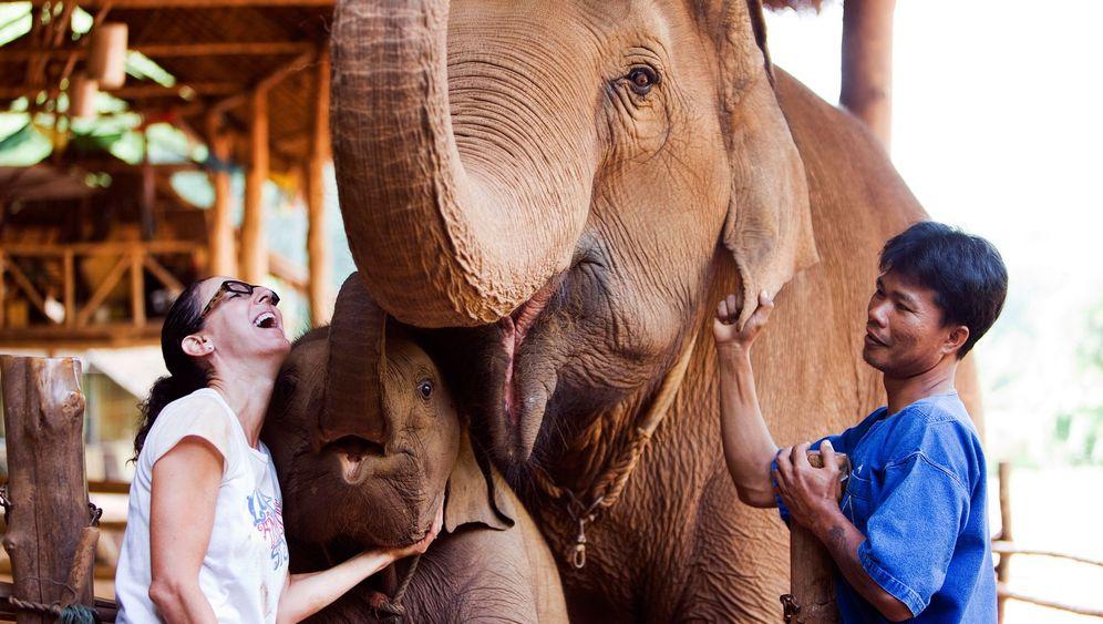 Grüner reisen in Thailand: Luxuszelten im Dschungel