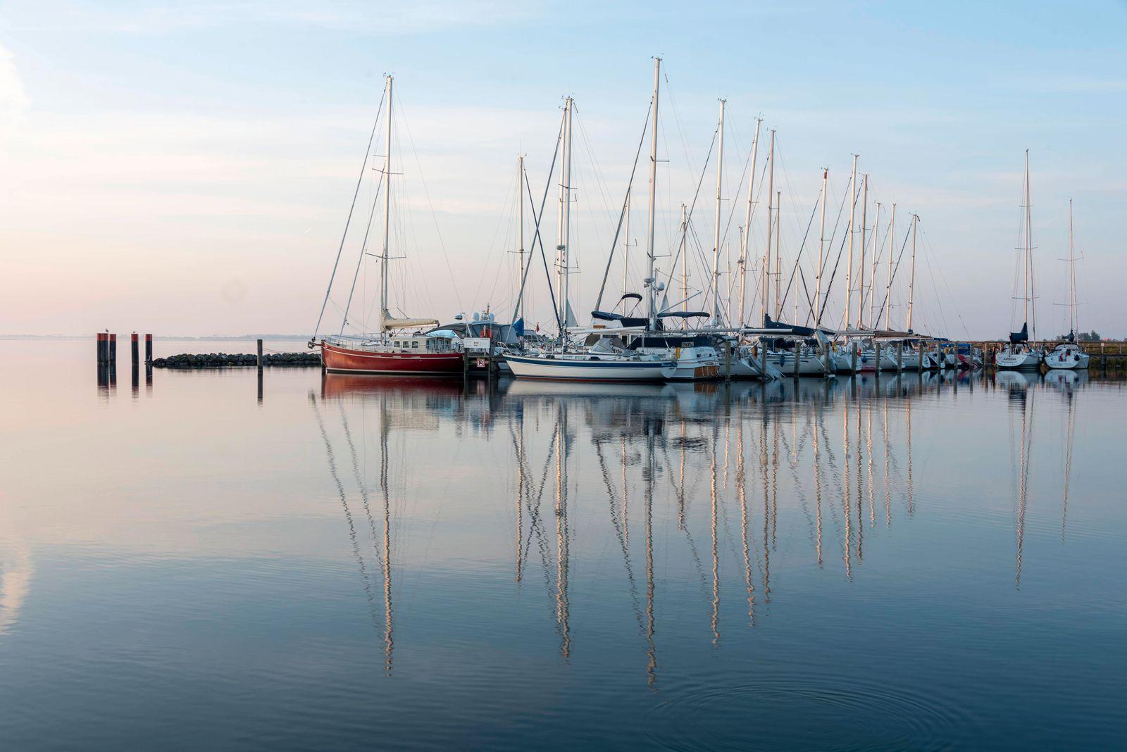 Segelboote spiegeln sich im Wasser des Boddens, Nationalpark Vorpommersche Boddenlandschaft, Kloster, Insel Hiddensee, M