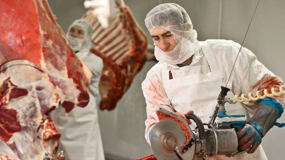 Fleischverarbeitung: Viel falsch deklariertes Pferdefleisch in Frankreich