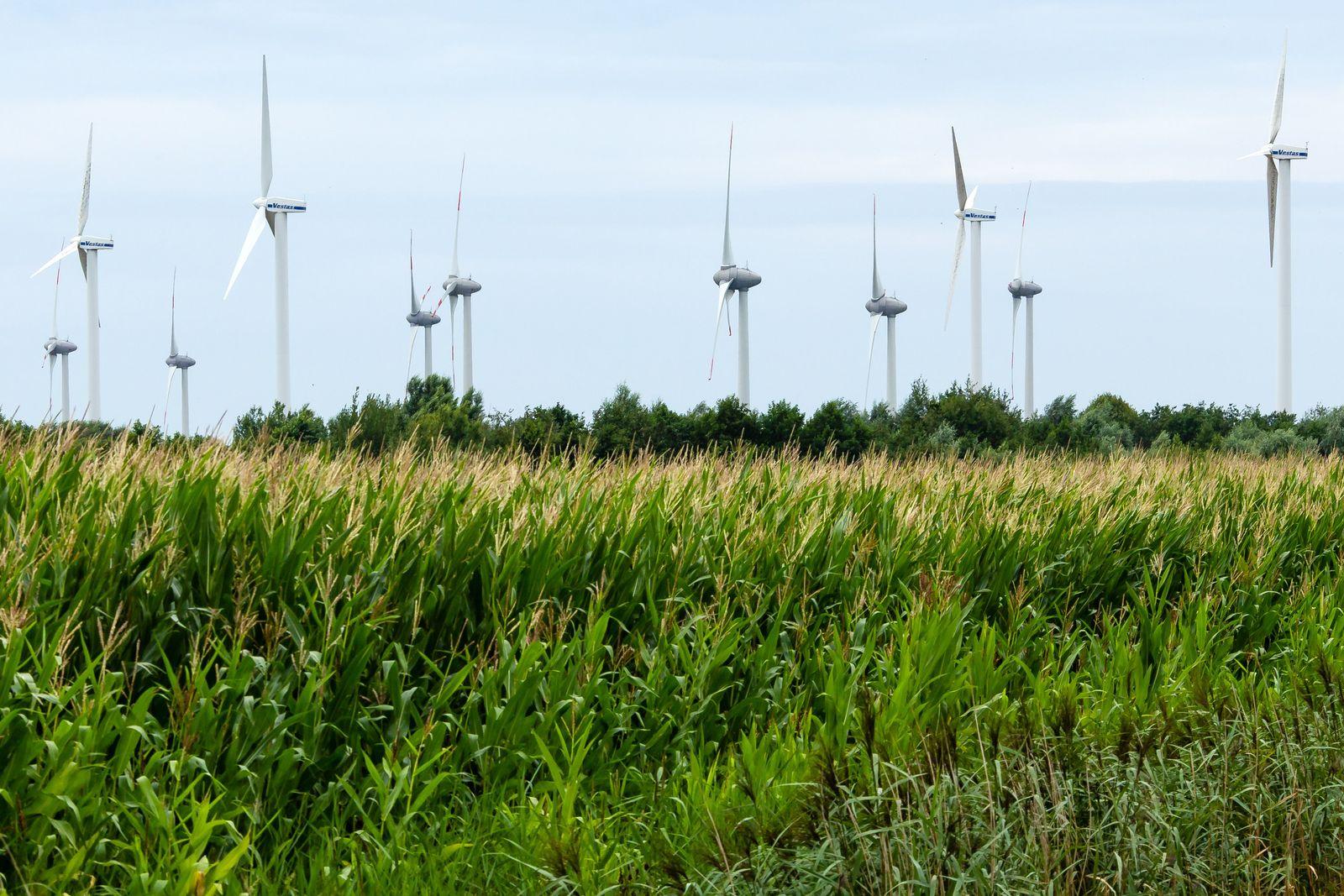 Windräder in Nordfriesland