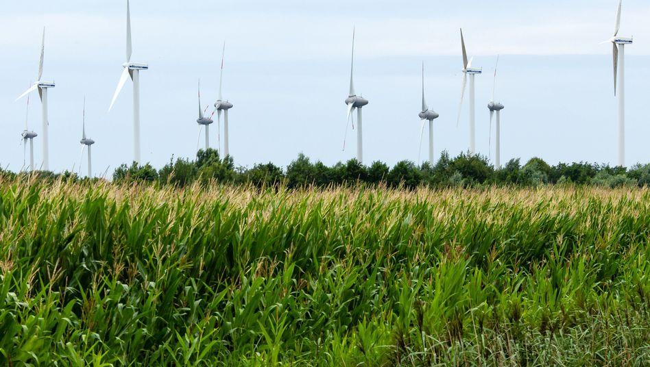 Windräder bei Husum: Der Ausbau der Windenergie stockt