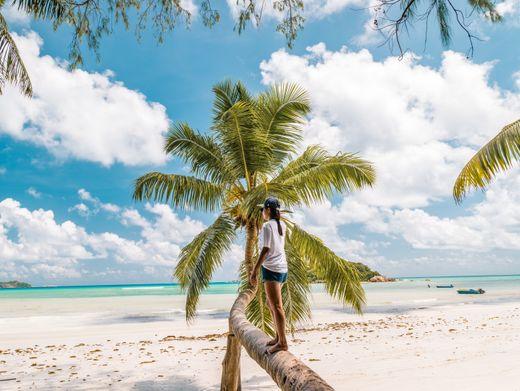 """""""Leere Strände finden wir wunderschön"""": Urlaub 2020 in der Ferne?"""