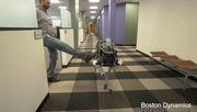 Diesen Roboterhund wirft nichts um