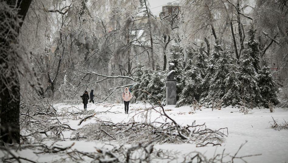 Bürger in Wladiwostok: Dort beteiligten sich Tausende Menschen freiwillig an den Aufräumarbeiten
