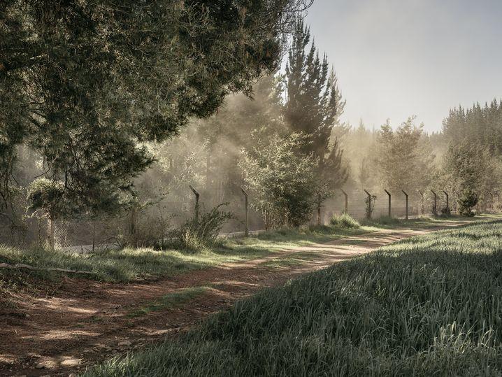 Gelände der Siedlung: Heute immer noch umzäunt