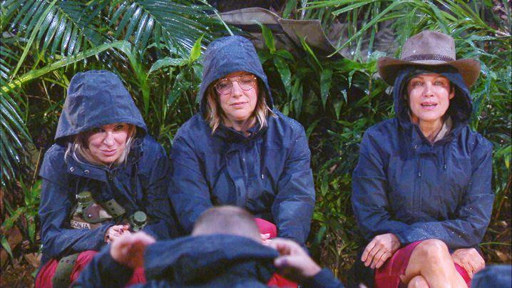 Dschungelcamp: Die Vergärung im Camp beginnt