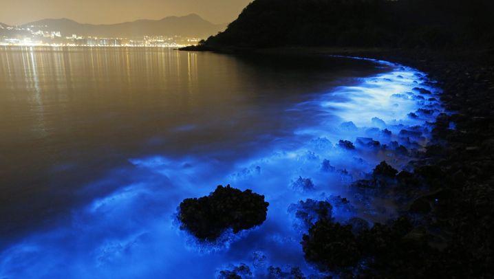 China: Blaues Leuchten verrät Wasserverschmutzung