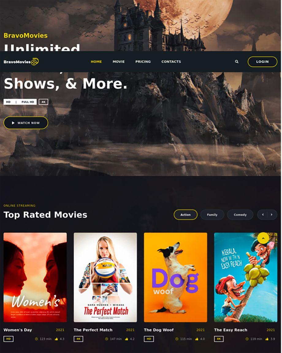Screenshot des Fake-Streamingdienstes