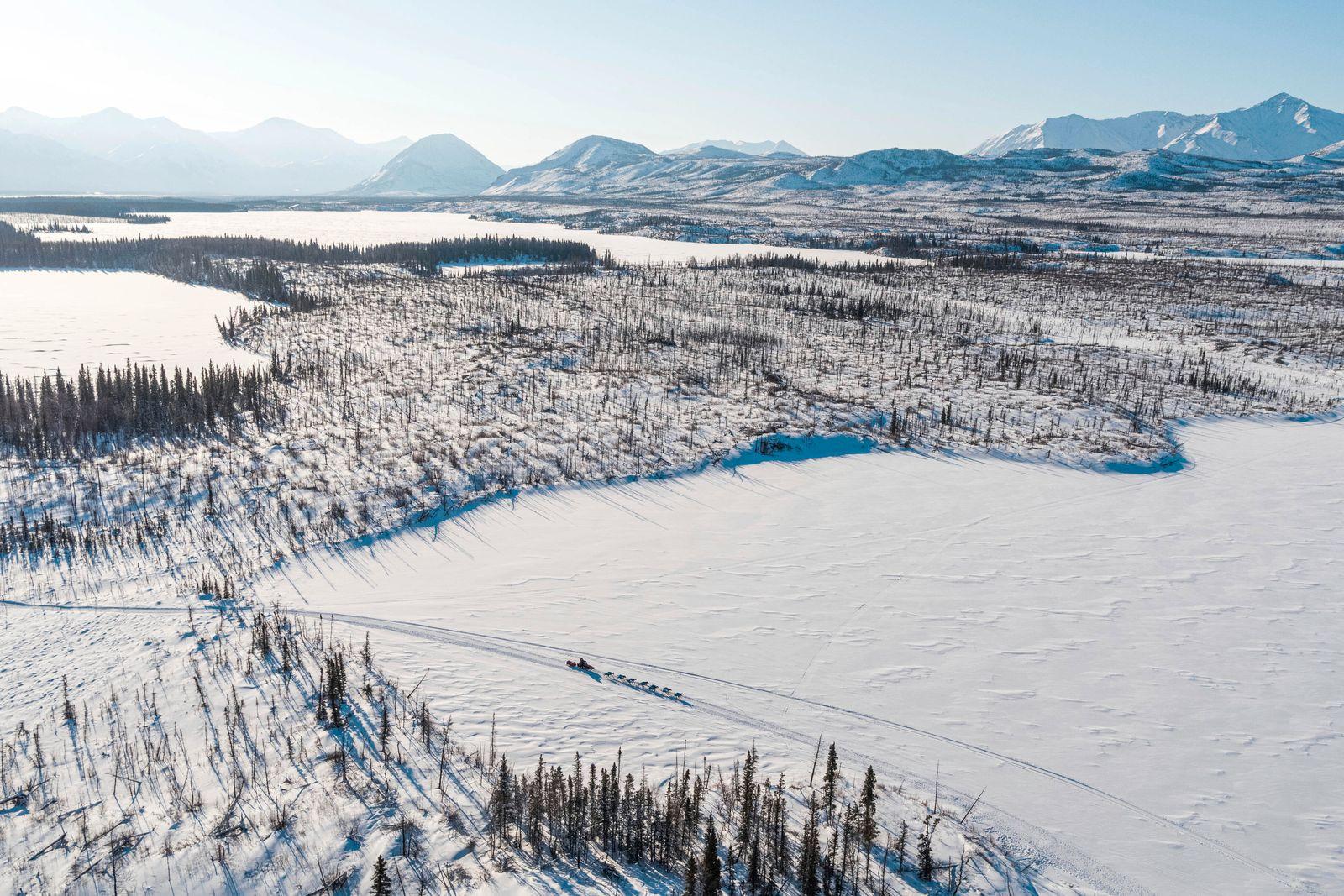2020 Iditarod, Iditarod 2020, Linwood Fiedler, farewell burn, iditarod, submarine lake