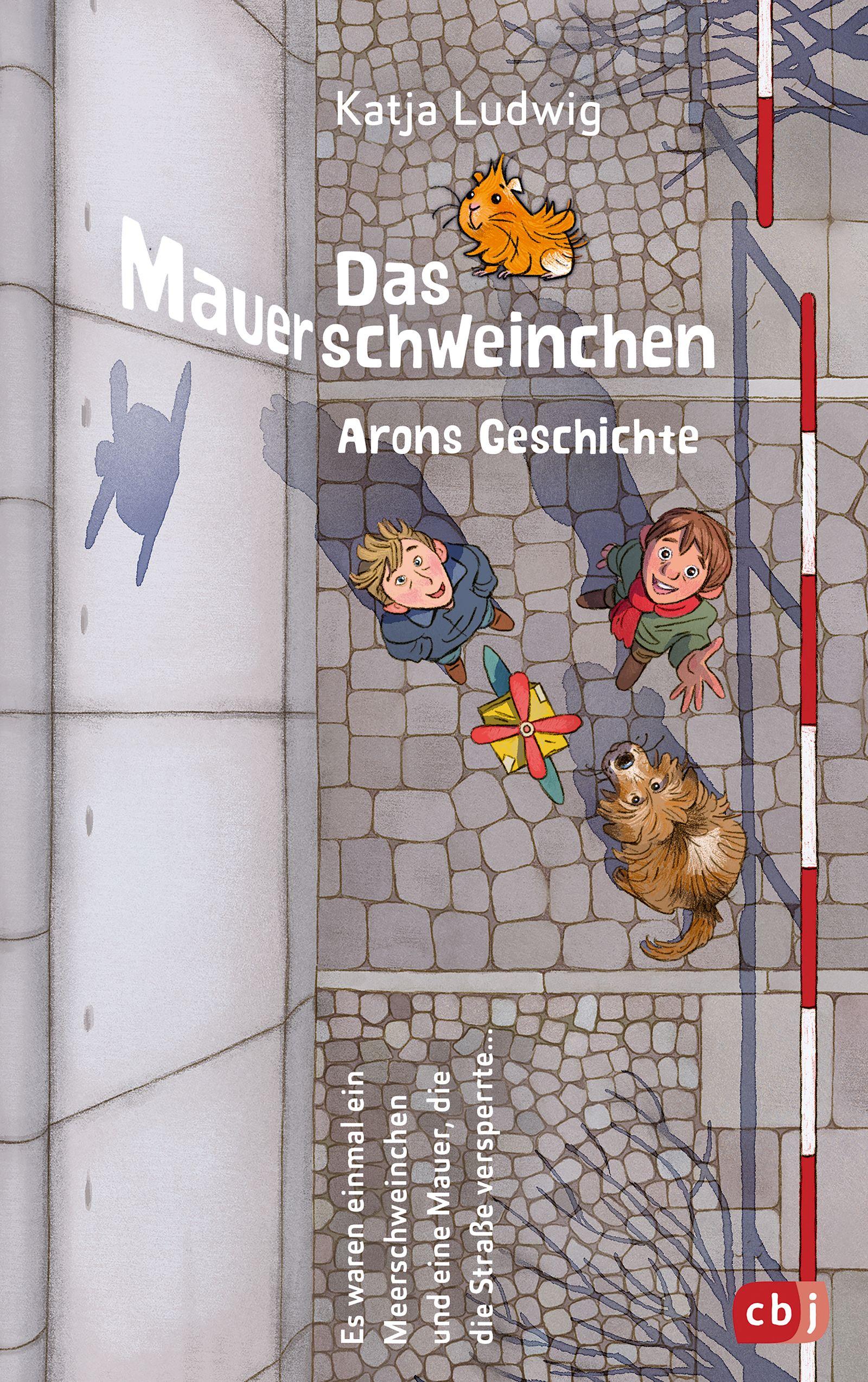 Buch/ Katja Ludwig: Das Mauerschweinchen: Ein Wendebuch COVER